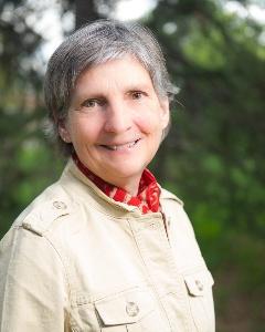 Holly Stein