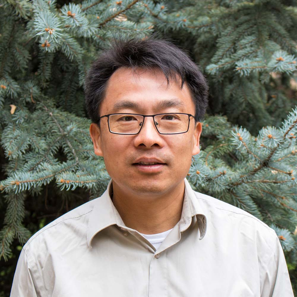Yu Wei